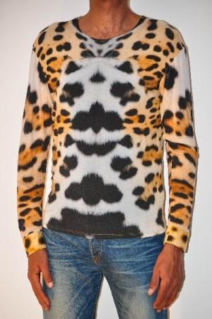 34 giaguaro