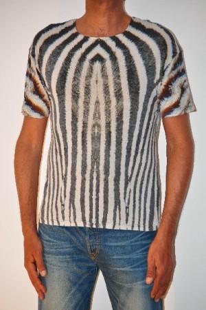 31 zebra uomo