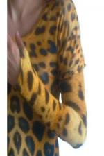 2 giaguaro manica