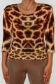 4 giraffa